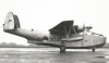 Blackbushe_bw_rjr_28929.jpg